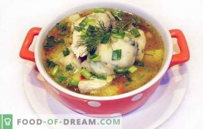 Chicken soup with dumplings - a dish from childhood! Author's recipes for cooking chicken soups with dumplings of semolina or flour