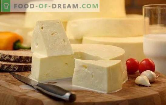 How to quickly cook suluguni at home: the recipe for young white cheese. Cooking gentle suluguni cheese at home