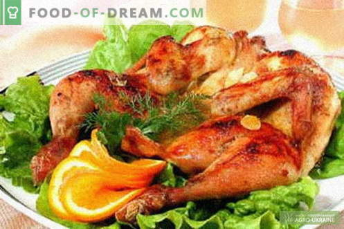 Chicken tobacco - the best recipes. How to properly and tasty cook tobacco chicken.