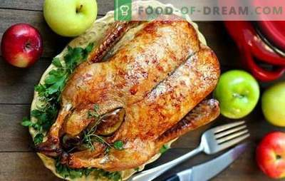 Christmas Goose: Top 5 Best Recipes