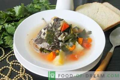 Catfish soup - how to cook it properly and tasty (recipe with photos)
