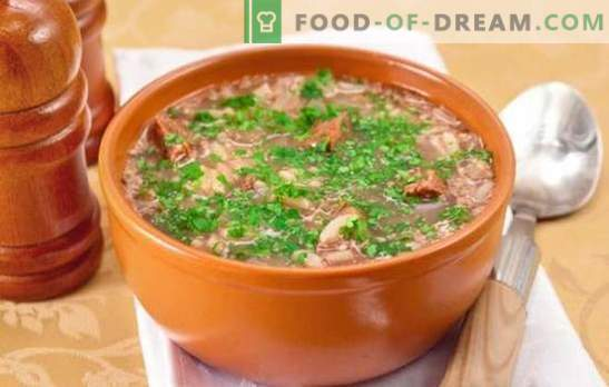 Classic Kharcho soup - interesting recipes. Cooking soup-classic kharcho of beef, lamb, pork