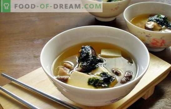 Oyster mushroom soup - an aromatic dish for lunch at any time of the year. The best recipes of mushroom soup of oyster mushrooms with chicken, cheese, etc.