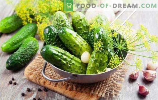 Instant salted cucumbers. Super-salted cucumbers: instant recipe in a package
