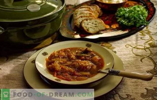 Daily soup - cook according to old recipes! Cooking technology, ingredients and different variations of daily cabbage