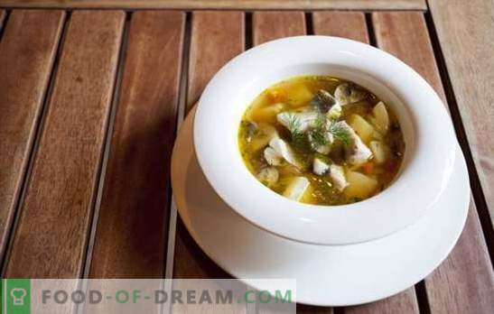 Ear of the classic - a recipe for the first dish of fish stuff and large sea fish. Recipes classic soup with potatoes, vodka, spices