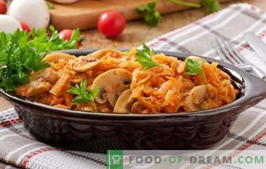 Lenten dishes with mushrooms are a great substitute for meat. Recipes of various lenten dishes with mushrooms: salads, soups, bigus, casseroles