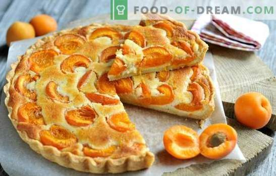 Simple apricot tart - anyone can handle it! Cooking summer apricot pies: simple recipes for everyone