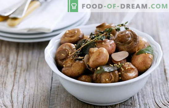 Variety of recipes and features of cooking marinated champignons. How to marinate champignons