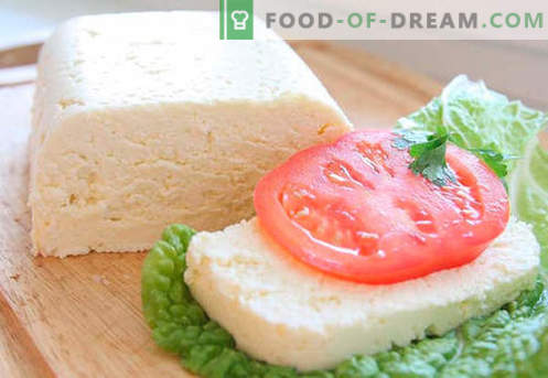 Homemade cheese - the best recipes. How to properly and tasty cook cheese from cottage cheese or milk at home.