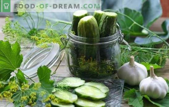 Sterilization of cucumbers for the winter in banks - the evolution of canning. Recipes and secrets