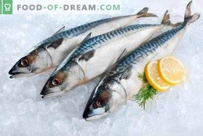 Mackerel: Benefits and Harm to the Body