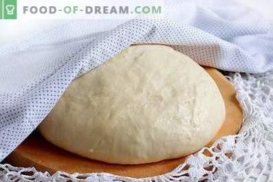 Fast Yeast Dough