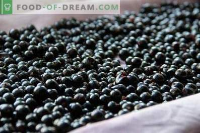 How to store black currants