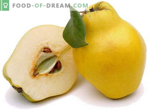 Quince - description, useful properties, use in cooking. Recipes with quince.
